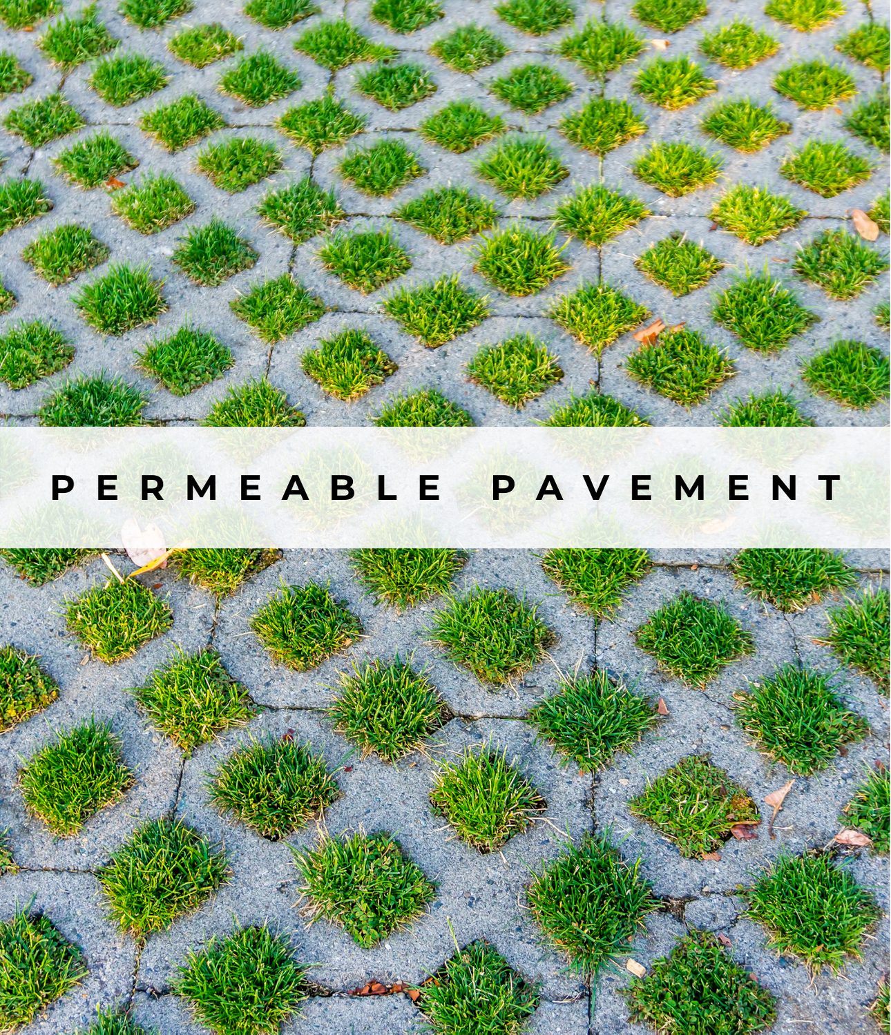Image of Permeable Pavement