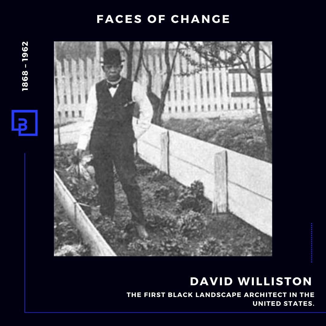 David Williston
